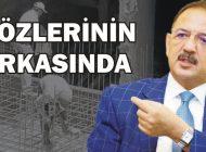 'İMAR HIRSIZLIĞI İÇİN İSTANBUL VE ANKARA'YA BAKIN'